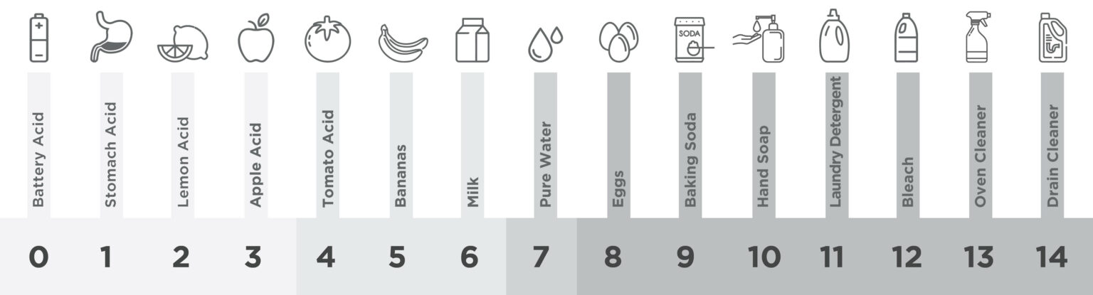 different foods and chemicals being compared on the pH scale